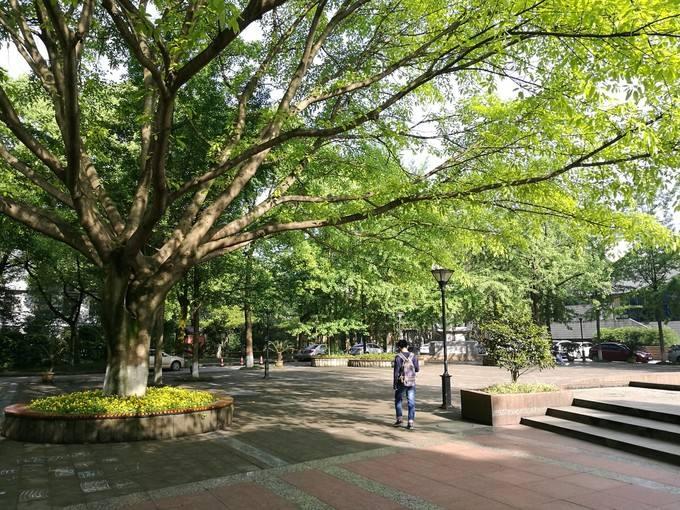 2019年重庆歌乐山哪家卫校学费比较便宜呢?